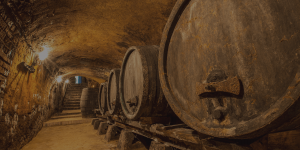 Investing in whisky barrels