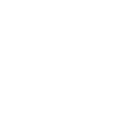 North Star Spirit